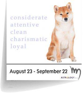 Virgo - Canine Horoscopes   Astrology com au