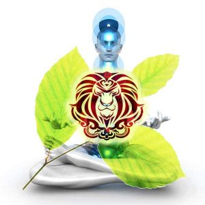 ASTROLOGY-HEALTH-LEO