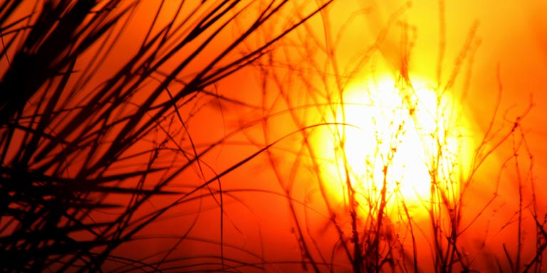 ASTROLOGY-PLANETS-SUN
