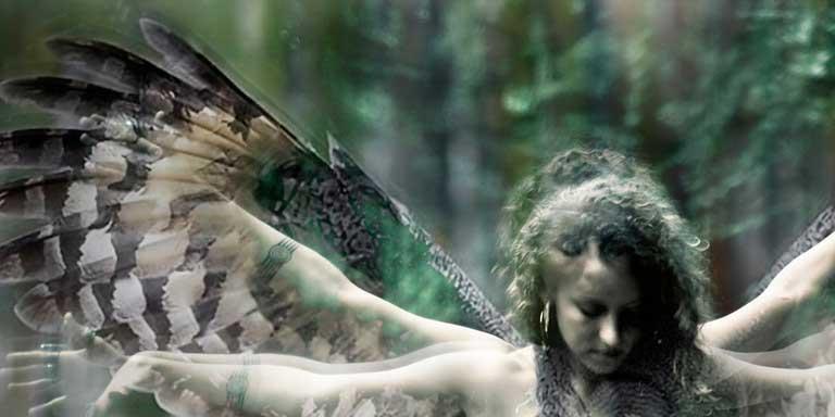 Free Animal Spirits Oracle
