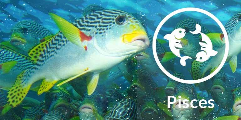 Pisces - Karma, Luck & Spirituality | Astrology com au