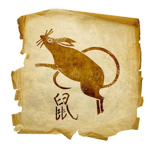 CHINESE RAT