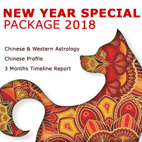 New year 2018 year of the dog chinese