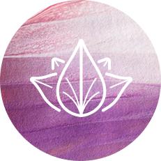 Vedic Symbol