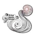 Aquarius 2019 NEW MOON Karmic Insights by astrology.com