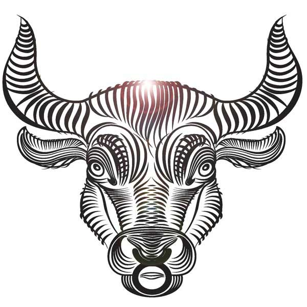 Ascendant or Rising Sign - Taurus