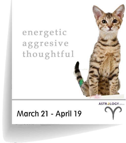 Astrology - Feline - Aries
