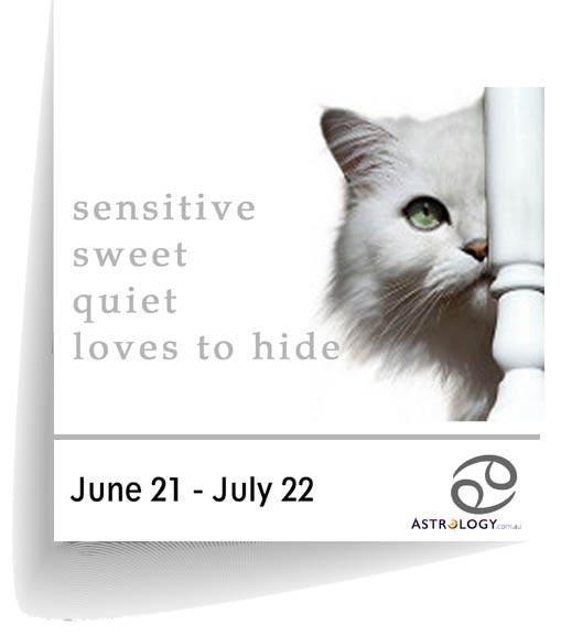 Astrology - Feline - Cancer