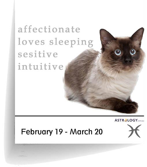 Astrology - Feline - Pisces