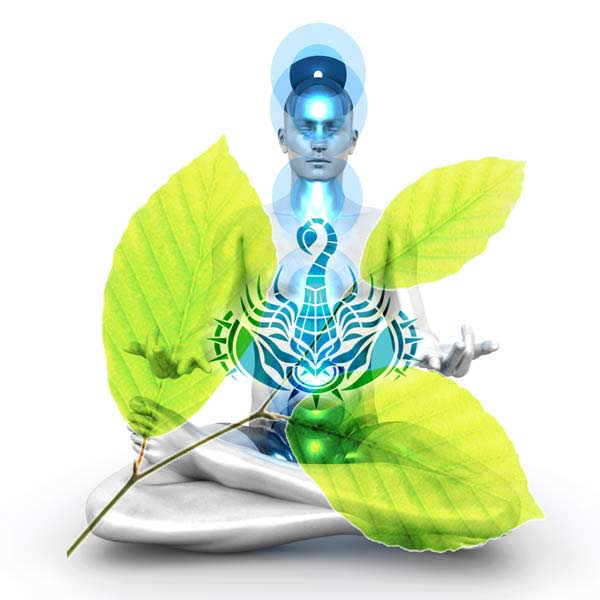 Scorpio Health and Wellbeing