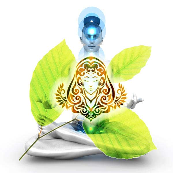 Virgo Health and Wellbeing